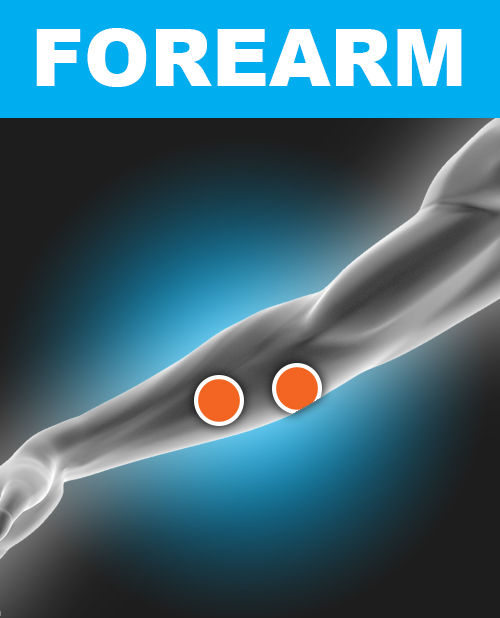 Forearm - Electronic Muscle Stimulation Pad Placement