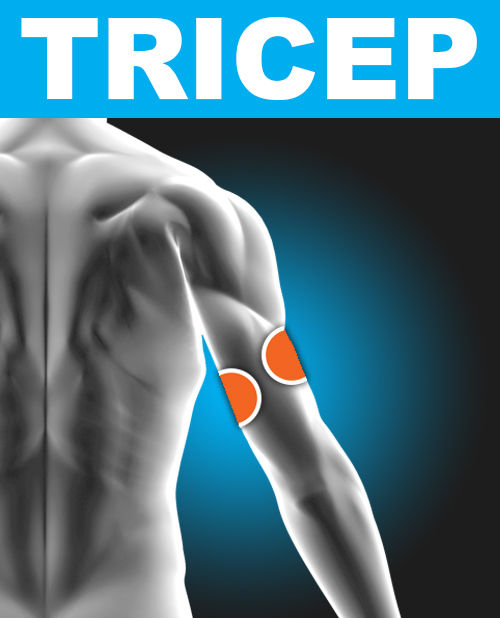 Tricep - Electronic Muscle Stimulation Pad Placement